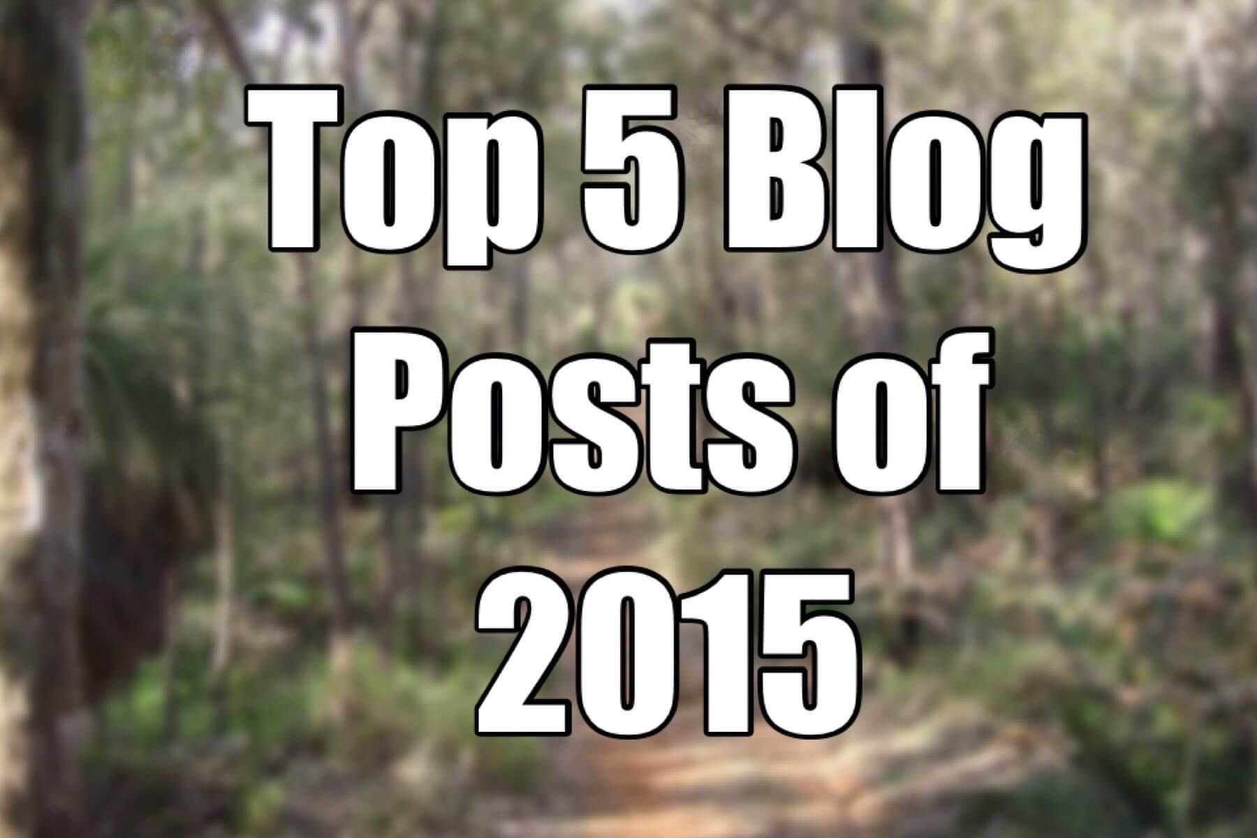 Top 5 Blog Posts of 2015!