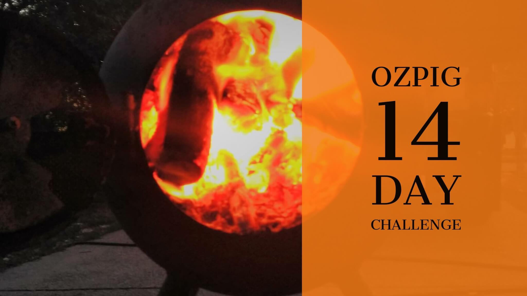 Ozpig 14 Day Challenge | 2017